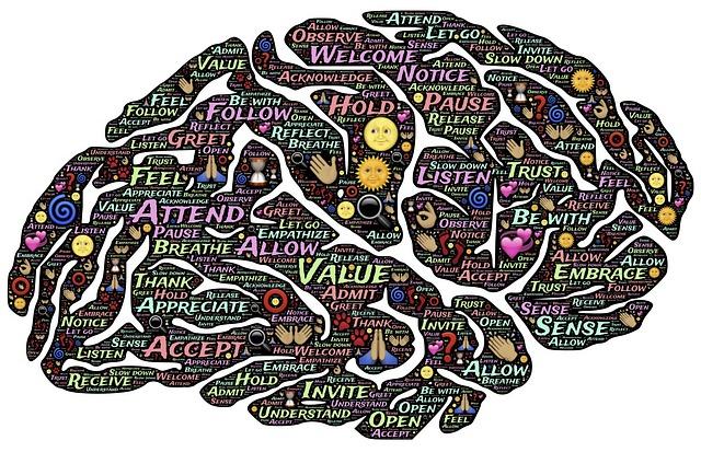 brain-744207_640 (1)